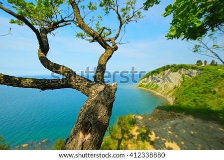View point above the sea. A view of the sea, the tree above the sea. Scenic lanscape, sea panorama - stock photo