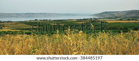 View   the Sea of Galilee , Kineret, Israel,