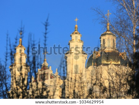View though tree branches to Holy Dormition Pochaiv Lavra, Ukraine