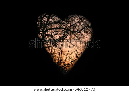View through a heart shaped window, with silhouettes of branches at sunset,