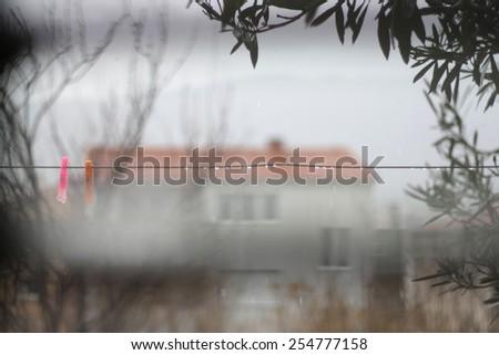 View through the window on a rainy day. - stock photo