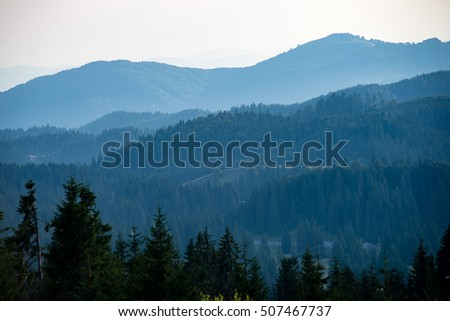 View to the carpathian mountains from forest with lonely trees and clouds above
