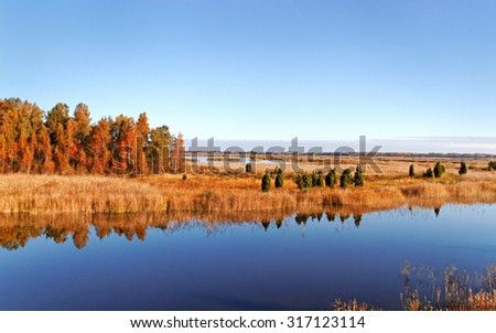 View to the lake in an autumn season.