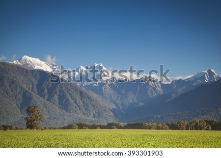 View to the Southern Alps New Zealand