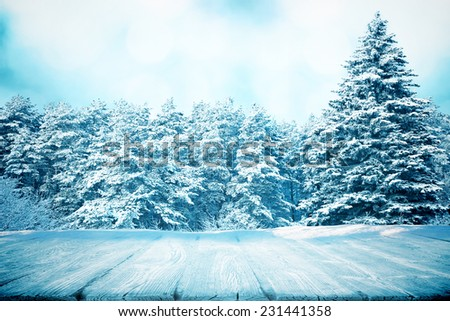 View to winter forest and wooden boards  - stock photo