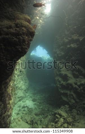 View trow the underwater window, Red sea, Egypt - stock photo