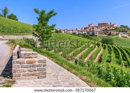 Viewpoint, green vineyards and small town on the hill under blue sky in Piedmont, Northern Italy.