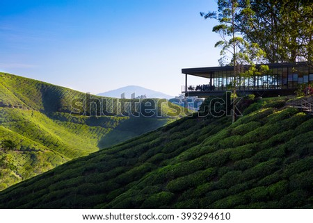Viewpoint on the top of cameron highland, tea valley and sunrise in Malaysia - stock photo