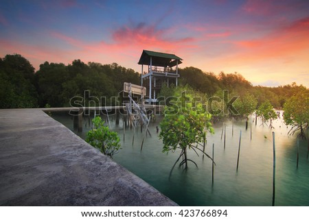 Viewpoint tower amidst the sea and the mangrove forest and beautiful nature during sunrise ,sunset. Beautiful landscape of Thailand - stock photo