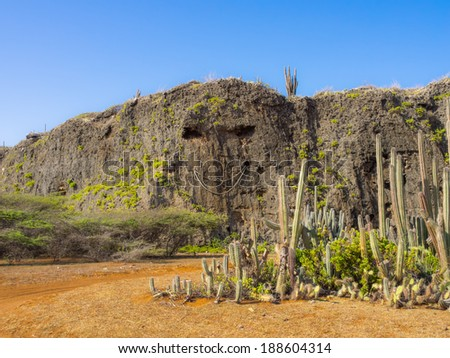 Views around Hato Plains and its caves and wind turbines Curacao Caribbean