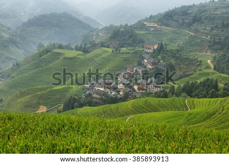 Views of green Longji terraced fields and Tiantouzhai village from viewpoint 1, China