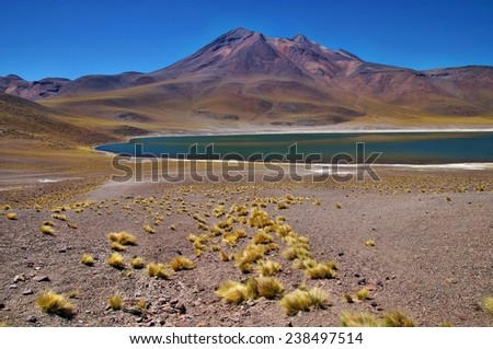 Views of Miniques Lagoon, Atacama Desert, Chile - stock photo