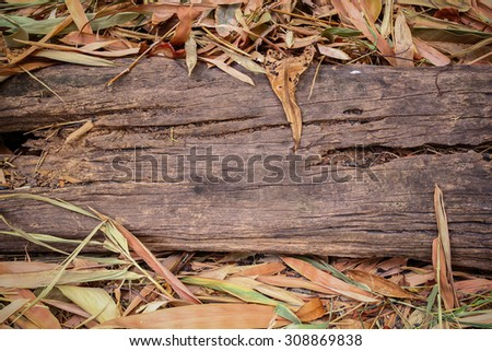Vignette wood log and dry leaf on ground. Old wood log on ground. Grunge wood log and dry leaf. Grunge wood trunk. Grunge wooden. Rough wood and dry leaf. Old tree log. Vignette tree log. Tree log - stock photo