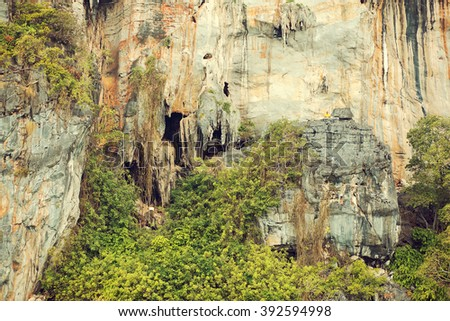 Viking Cave, the place where the extremely expensive swallow nests are collected, Phi-Phi islands, Krabi, Thailand. Image with selective focus and toning - stock photo