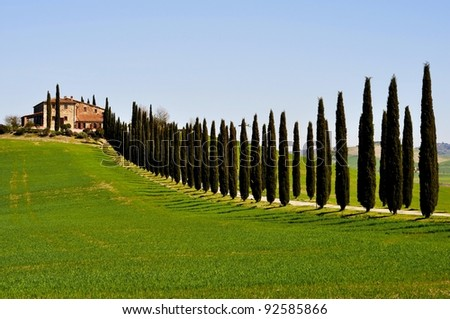 villa in tuscanyvilla - Villas Tuscany