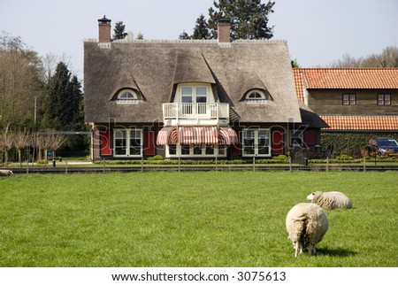 villa with sheep