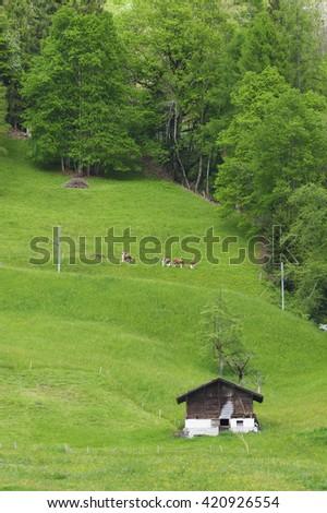 Village in Lauterbrunnen valley,Switzerland - stock photo
