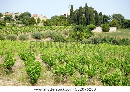 Village Montpeyroux and vineyards, France                                - stock photo