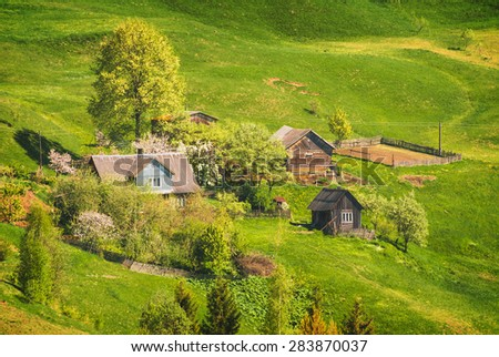 Village on a mountain hill, covered with fresh green grass. Carpathian landscape. Spring time