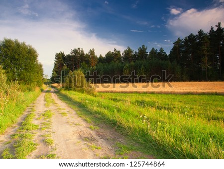 village sandy road. rural landscape