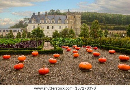 Villandry castle  in the Loire Valley at fall day, France - stock photo