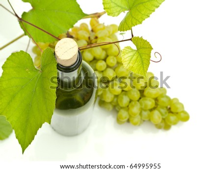 vine and bottle of wine