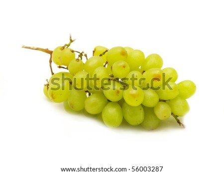 Vine composition isolated on white