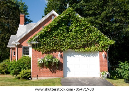 vine covered home - stock photo