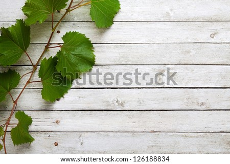 Vine leaves on a white wooden background - stock photo
