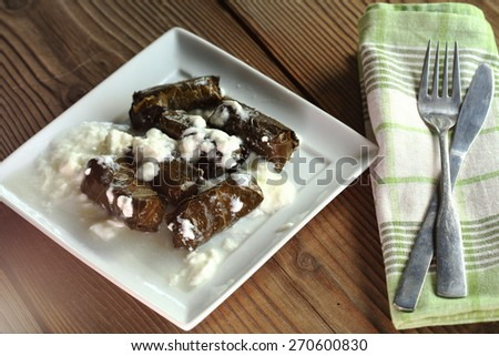 vine leaves stuffed with rice close up - stock photo