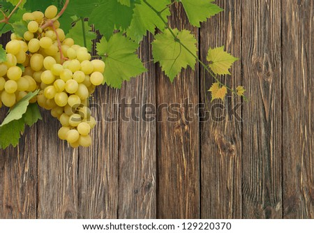 vine on a wooden  background - stock photo