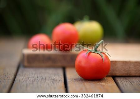 Vine Ripened Tomatoes - stock photo