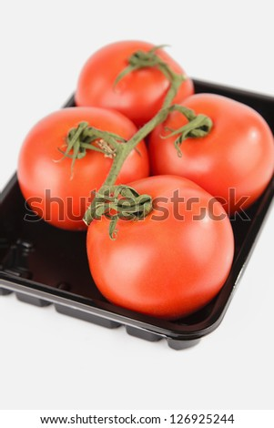vine tomatoes on white background
