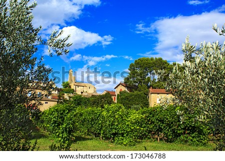 Vines at outskirts of Puymeras village in Provence-Alpes-C�´te d'Azur region, France - stock photo