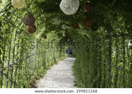 Vines flower tunnel - stock photo