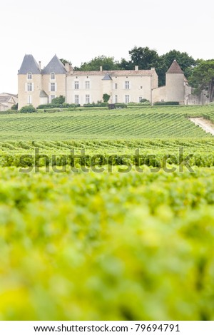 vineyard and Chateau d'Yquem, Sauternes Region, France - stock photo