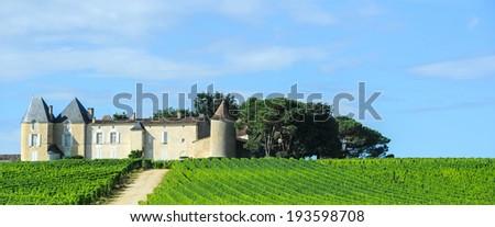Vineyard and Chateau, Sauternes Region, Aquitaine, France - stock photo