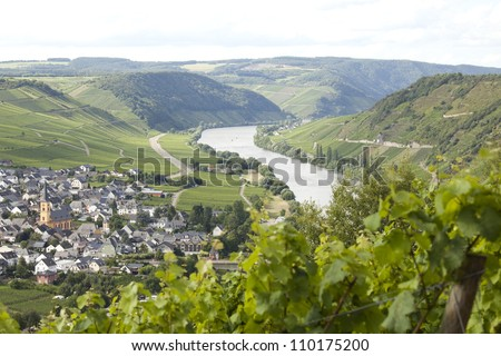 Vineyard and village on Mosel river. Focus on river - stock photo