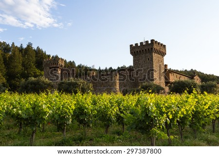 vineyard and winery in California, photo taken in spring 2015 with lush green grape vines - stock photo