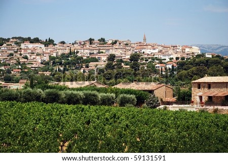 vineyard in Provence, France with  village on back