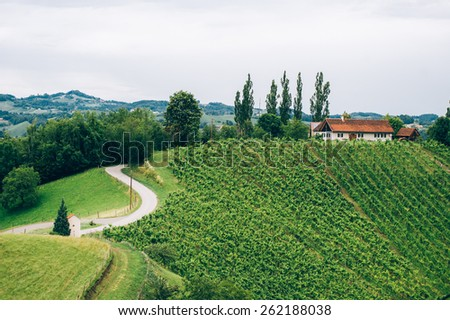 Vineyard in Southern Styria with typical Farmhouse - stock photo