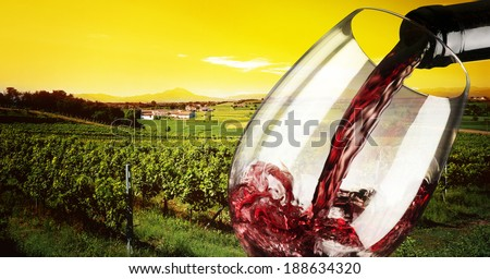 vineyard in the sunset with glass of wine - stock photo