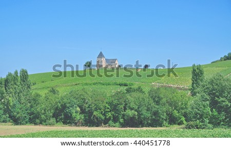 Vineyard Landscape near Epernay in Champagne Region,France - stock photo