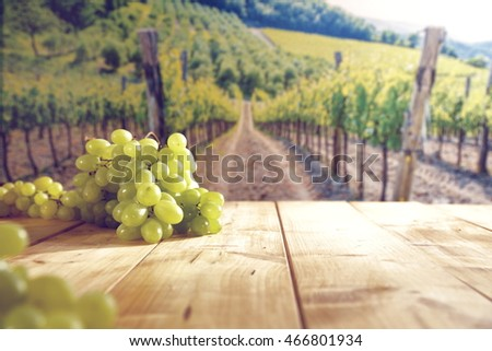 vineyard with a wooden table and sun