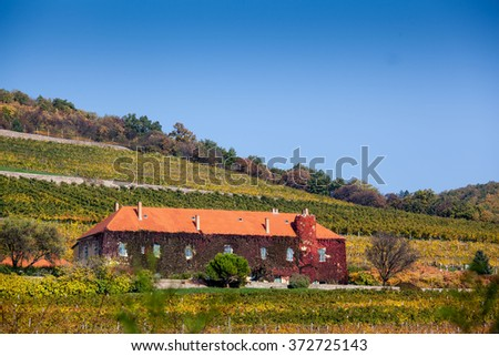 Vineyard with building in Pecs, hungary