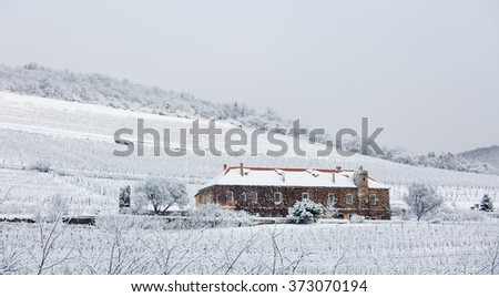 Vineyard with building in Pecs, hungary with snow