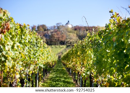 Vineyard with small Chapel on hill in late autumn - stock photo