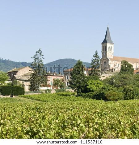 Vineyard, with village Julienas, Beaujolais. France. - stock photo