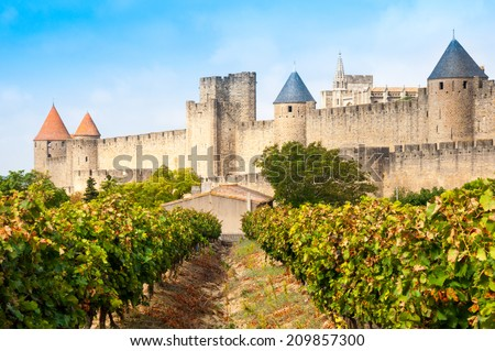 Vineyards and medieval town of Carcassonne (France) - stock photo