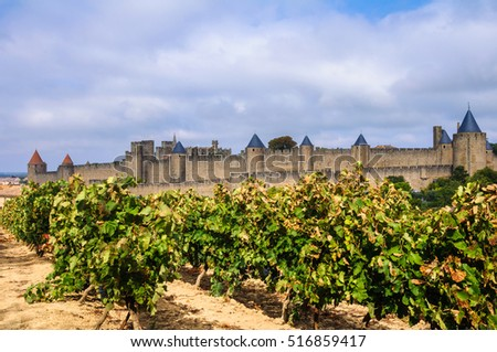 Vineyards and medieval town of Carcassonne (France)